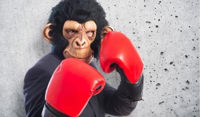 Man in monkey mask wearing boxing gloves